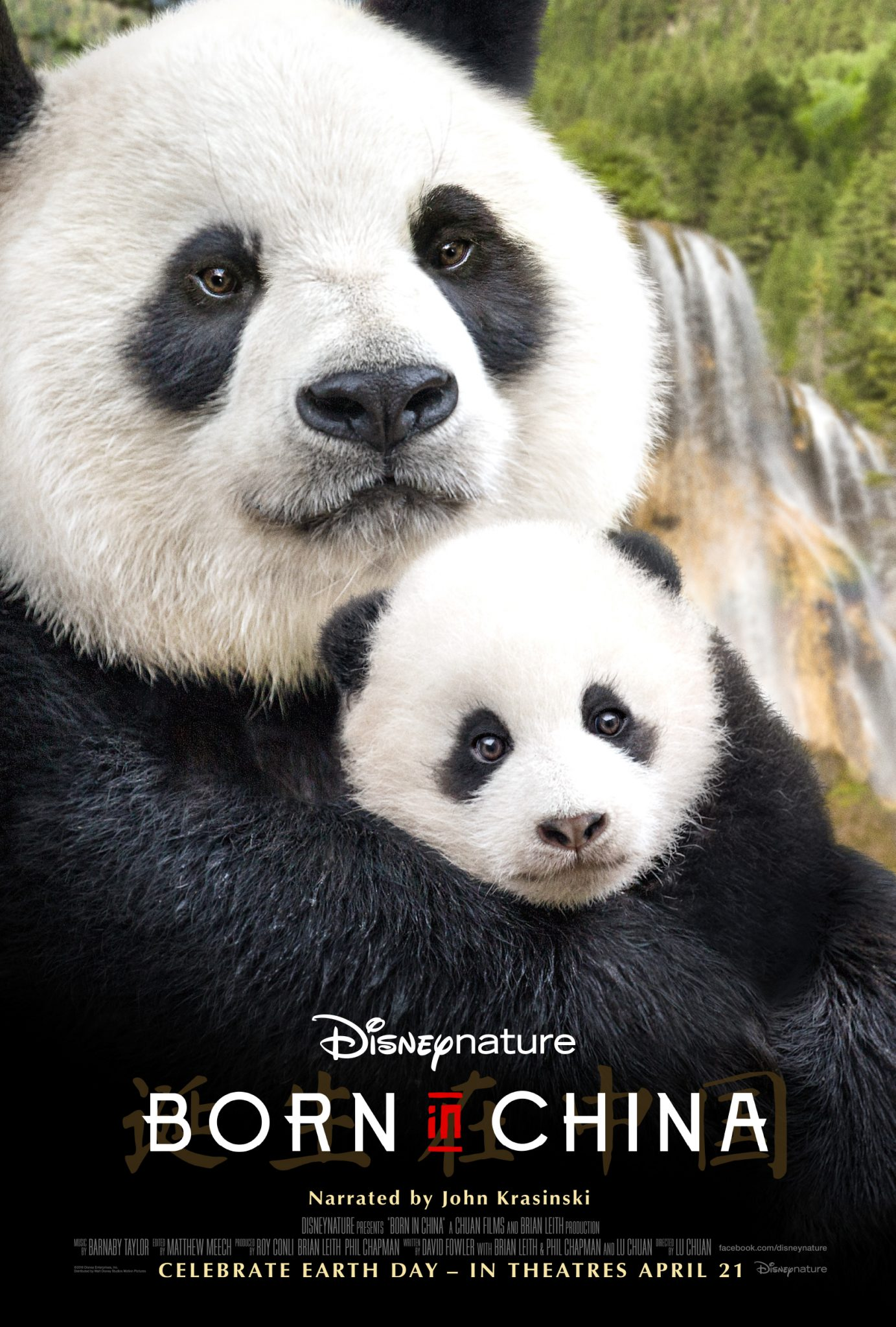 My Review: Born In China