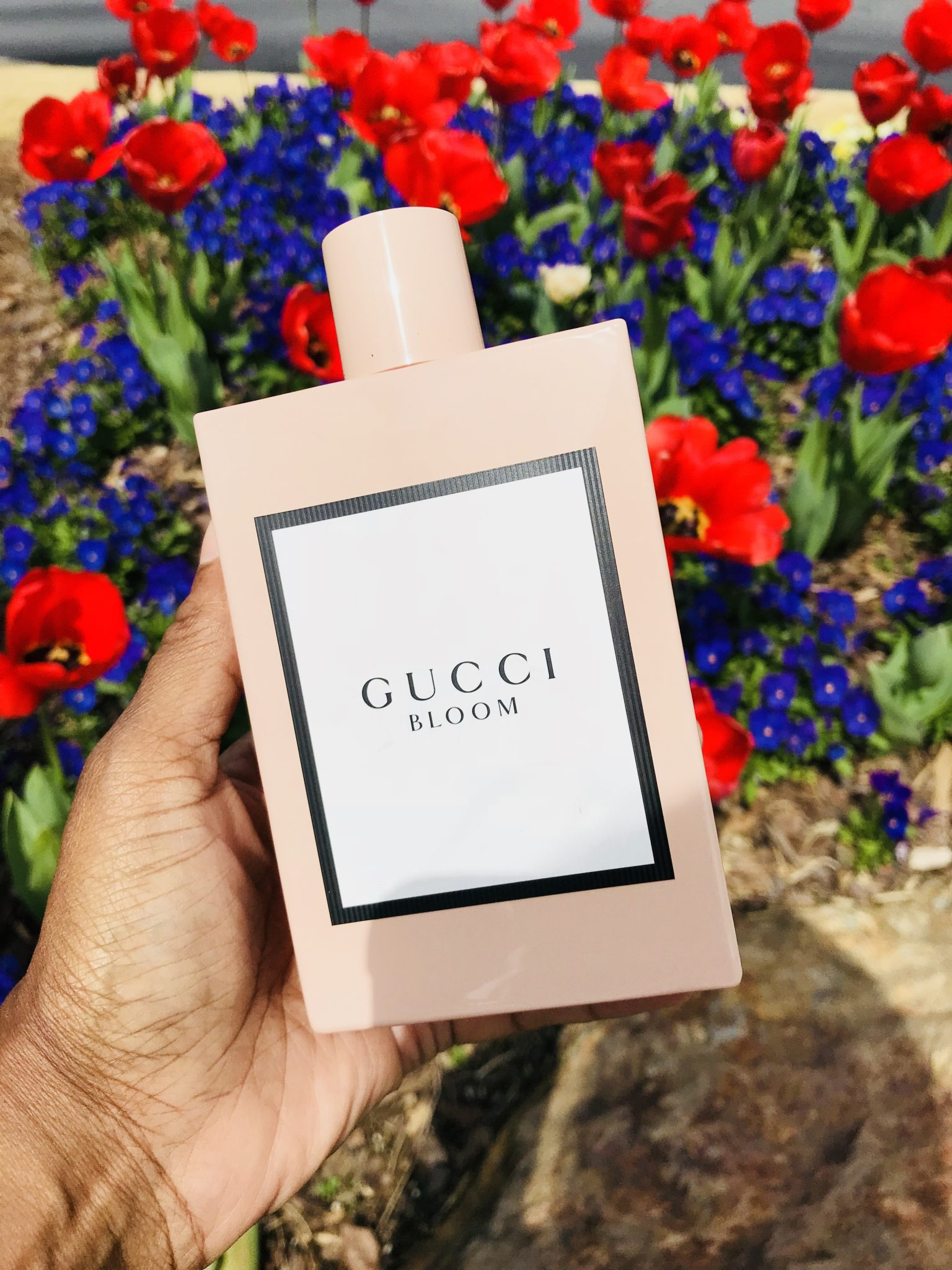 New Fragrance: Gucci Bloom