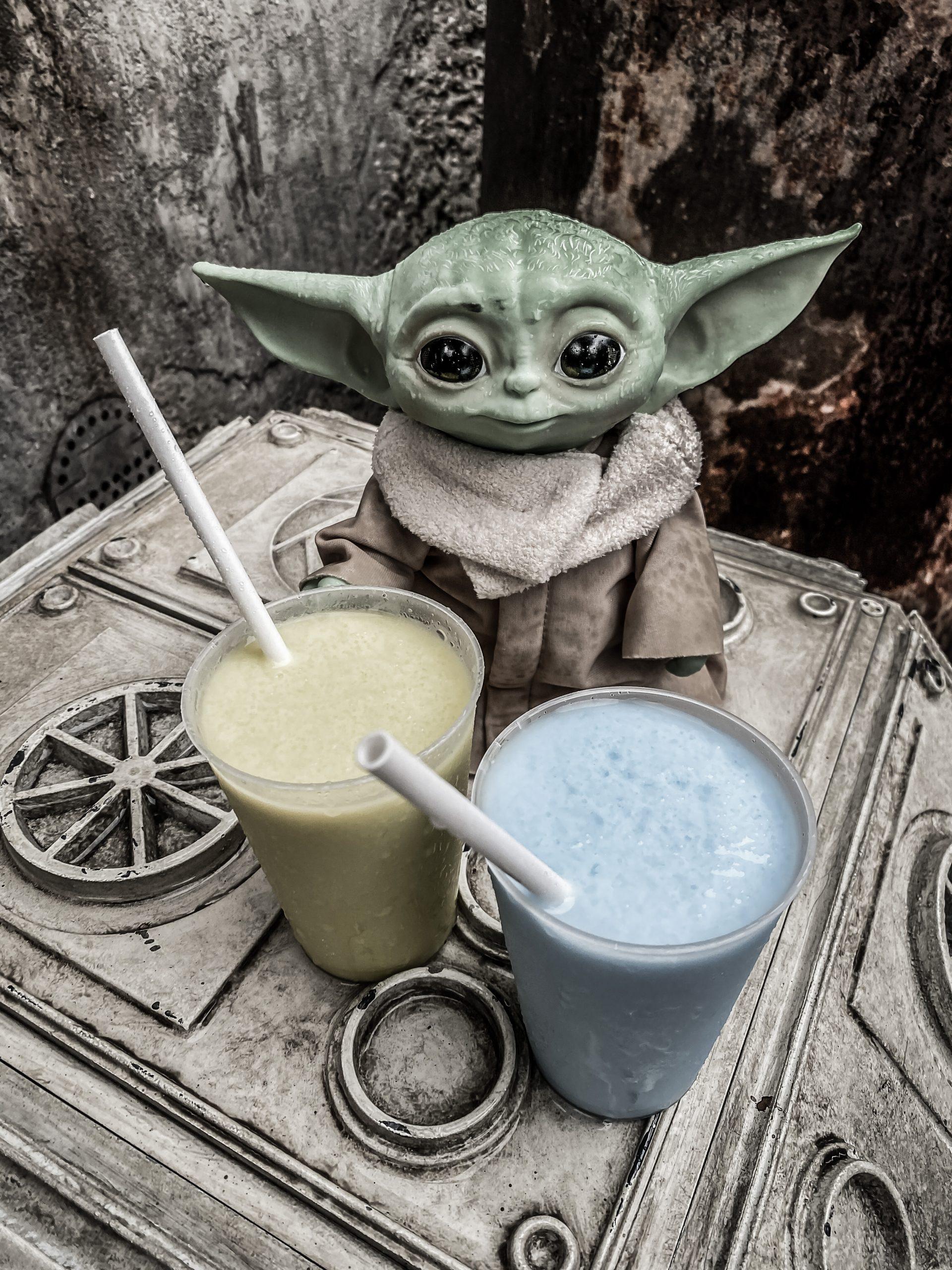My Experience At Disney's Hollywood Studios/ Star Wars: Galaxy's Edge