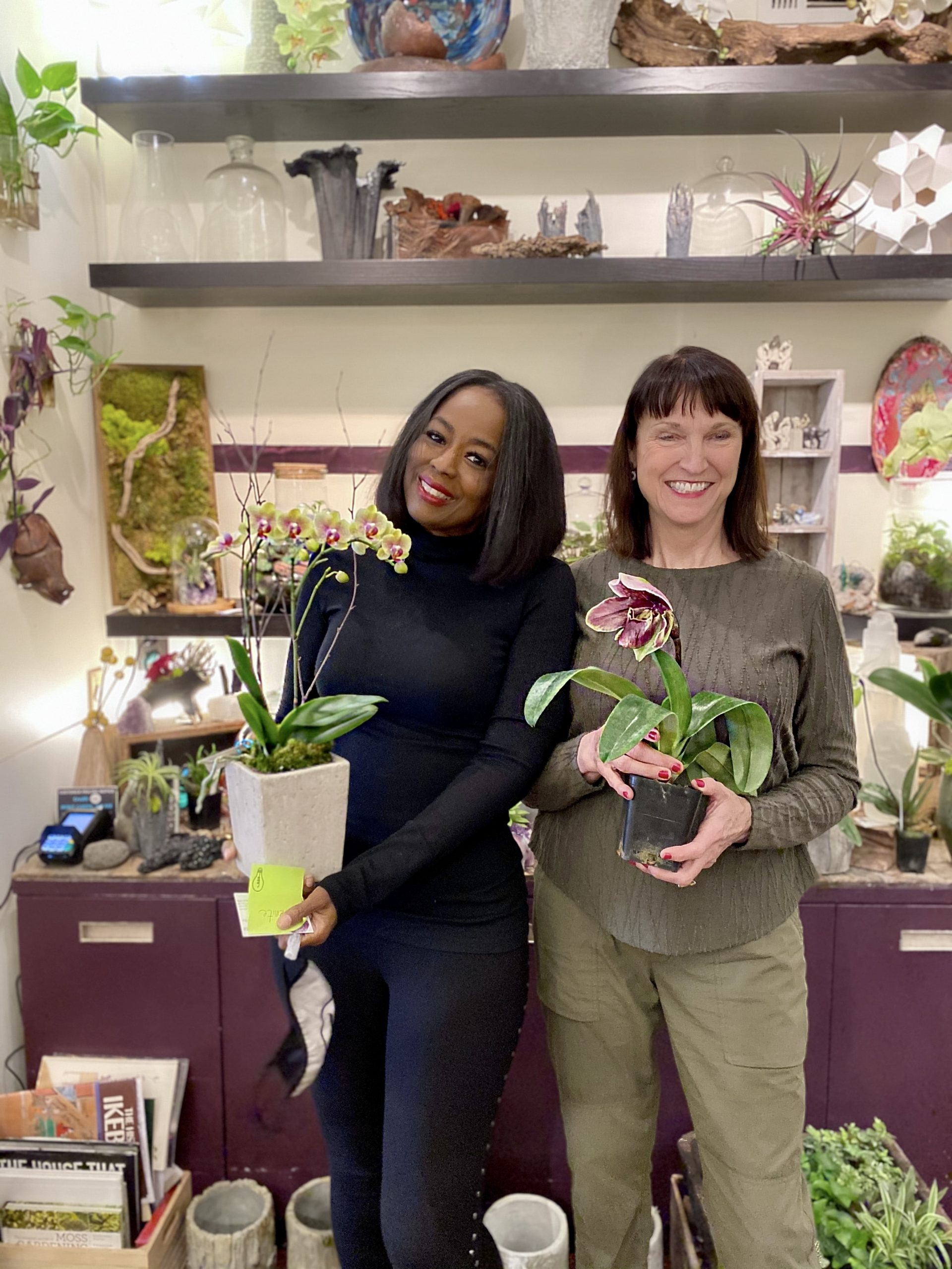 Five Things I Learned About Orchids With Terry Furuta Designs